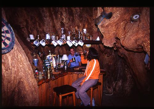 baobob tree pub limpopo