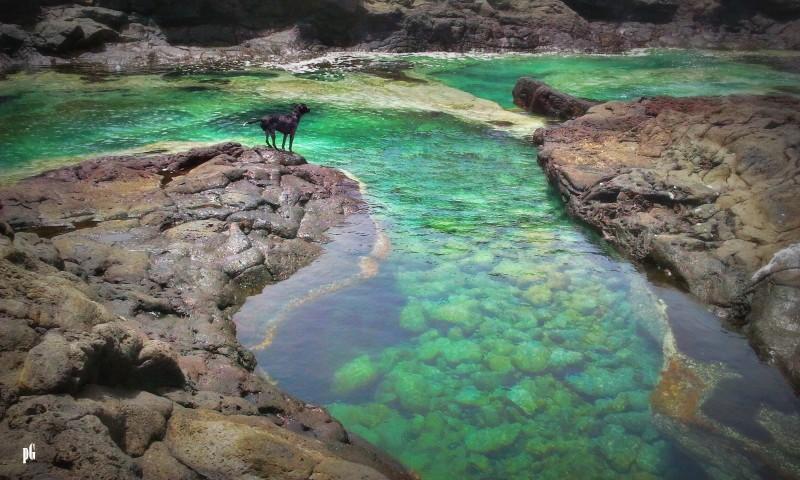 Rincones de pepa glez los charcones piscinas naturales i for Piscinas naturales yaiza lanzarote