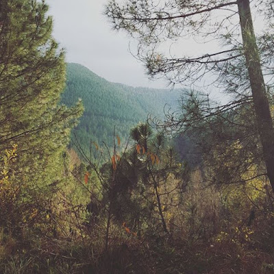 Automne Cévennes Excursion Randonnée Petits bonheurs Pensée positive Famille Aventure Amour