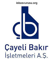 cayeli-bakir-is-ilanlari