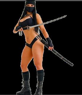 Free ninja gaiden porn