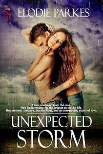 Hot new release from Secret Cravings 'Unexpected Storm' a short, erotic romance