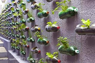 Kreatif Dari Botol Minuman