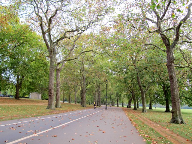 Hyde park and kensington gardens nicholas l garvery for Kensington park