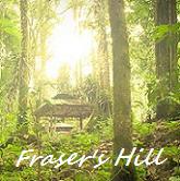 Visit FraserHill
