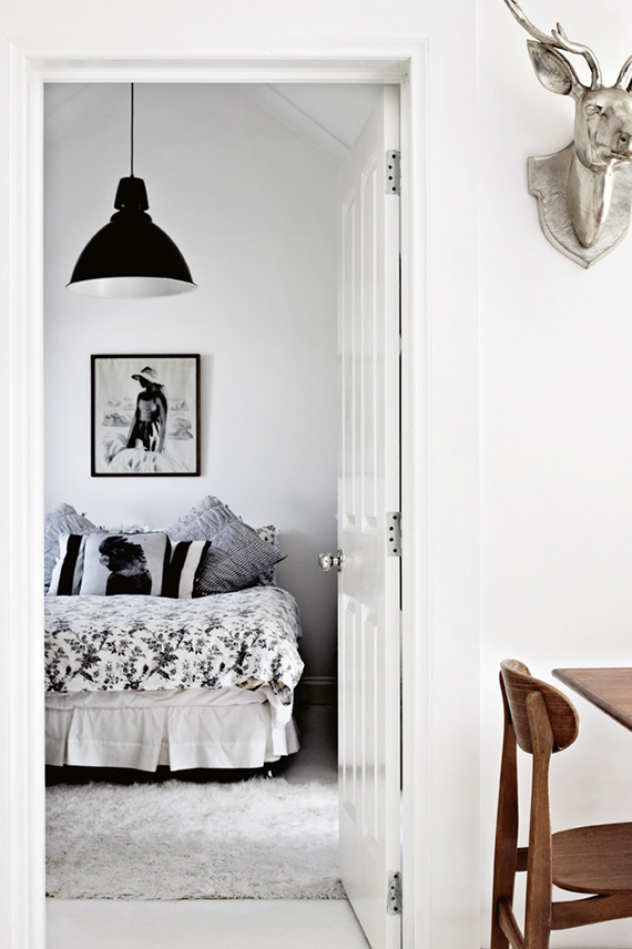 LOVE OR NOT: Faux taxidermy on wall | Image by Sharyn Cairns via Homelife