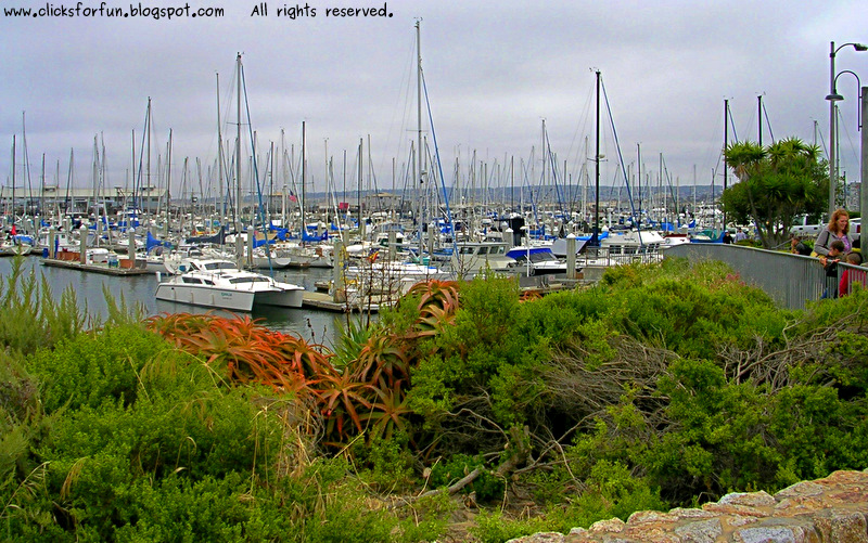 monterey bay california oceans coastline beach nature boats photography