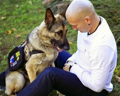 Three Counties Dog Training