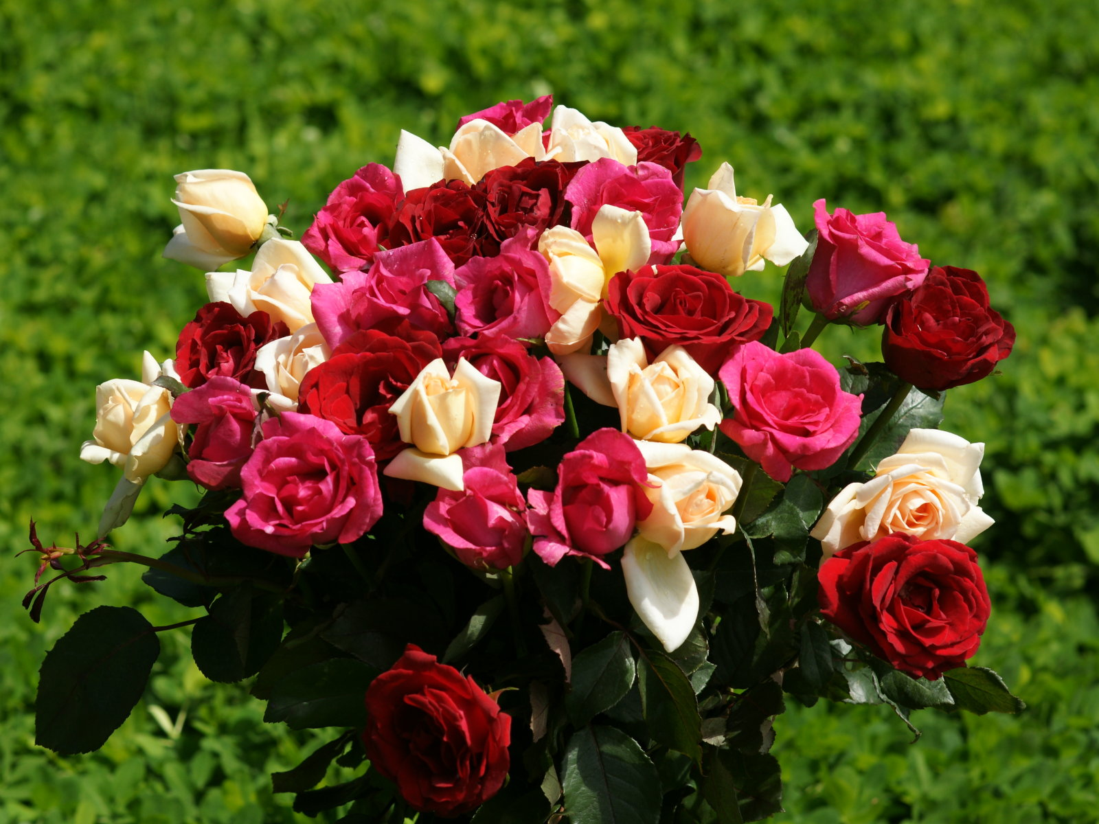 Send Online Flowers Gifts Cakes Sweets To Chennai Send Flowers