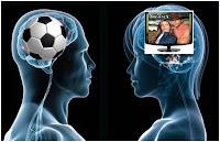 hombres mujeres cerebros diferencias