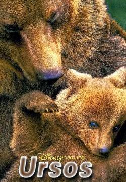 Baixar Filme Ursos Dual Audio