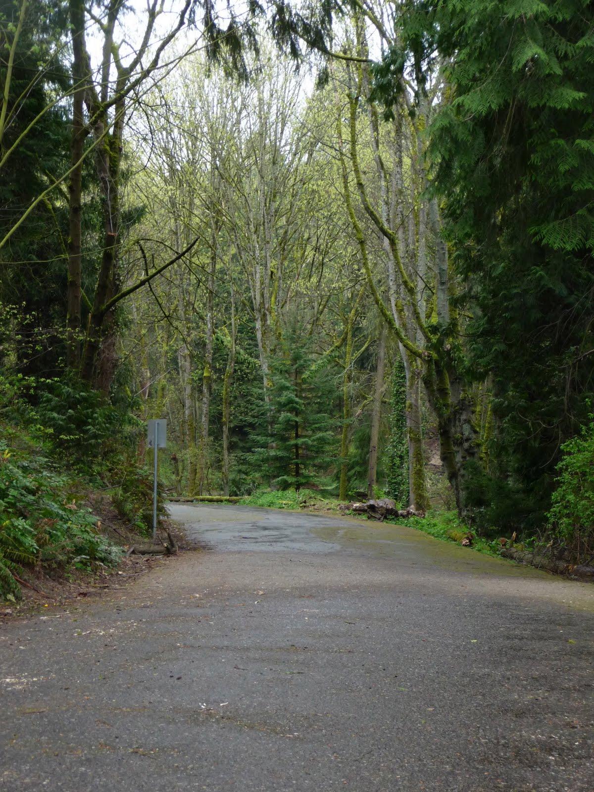 bike route around lake washington
