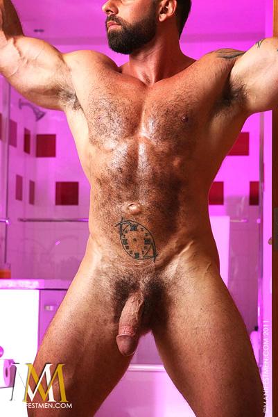 Gay Muscle Bear Daddies