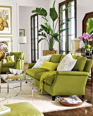 great green living room with lots of plants