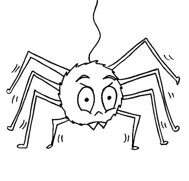 Desenho de Insetos para colorir Aranha