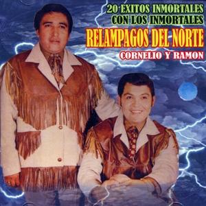 los relampagos 20 exitos inmortales Discografia Ramon Ayala (53 Cds)