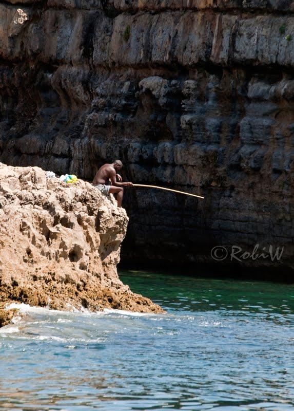 food fishing