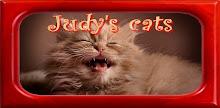 Judy's-cats