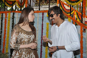 Bengal Tiger Movie launch event photos-thumbnail-12