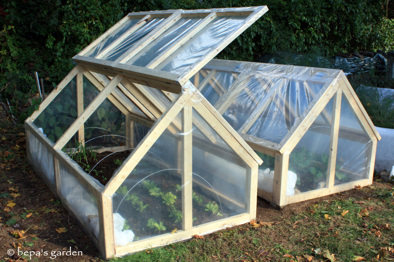 planning for spring planting cold frames mini greenhouse
