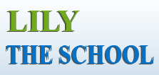 Lily School Madinaguda logo