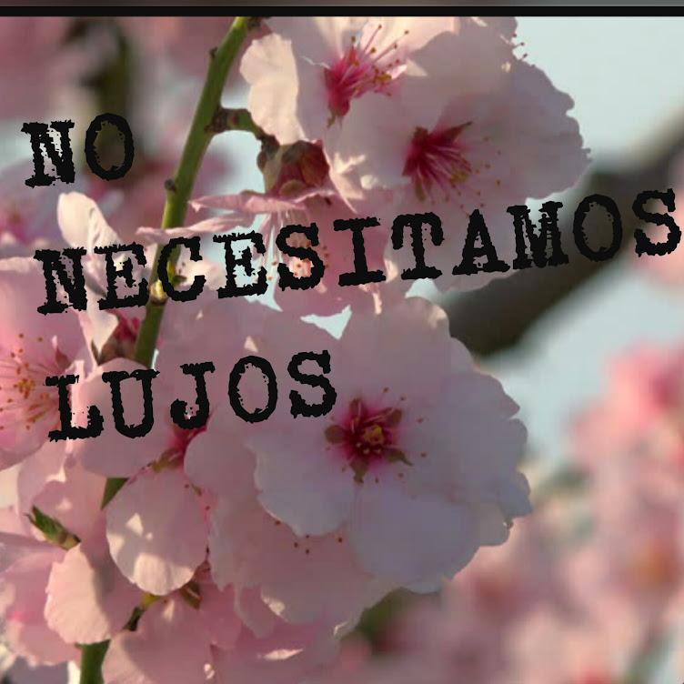 No Necesitamos Lujos