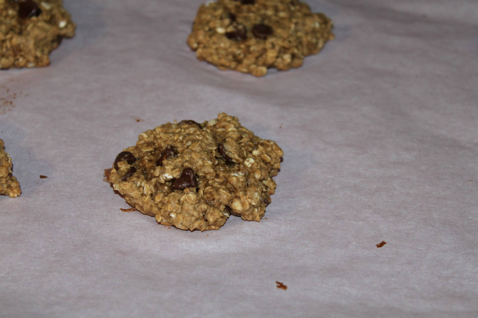 The Davis Dailies: Low-fat Chewy Oatmeal Chocolate Chip Cookies