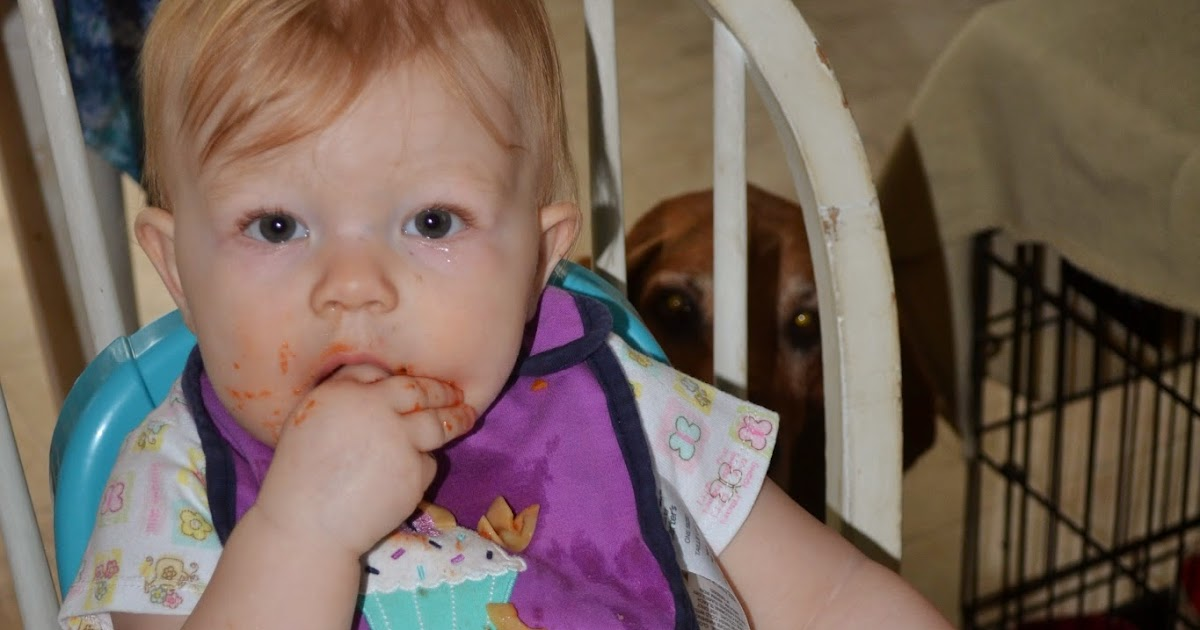 Finger Foods for an 11 Month Old - Meal Ideas