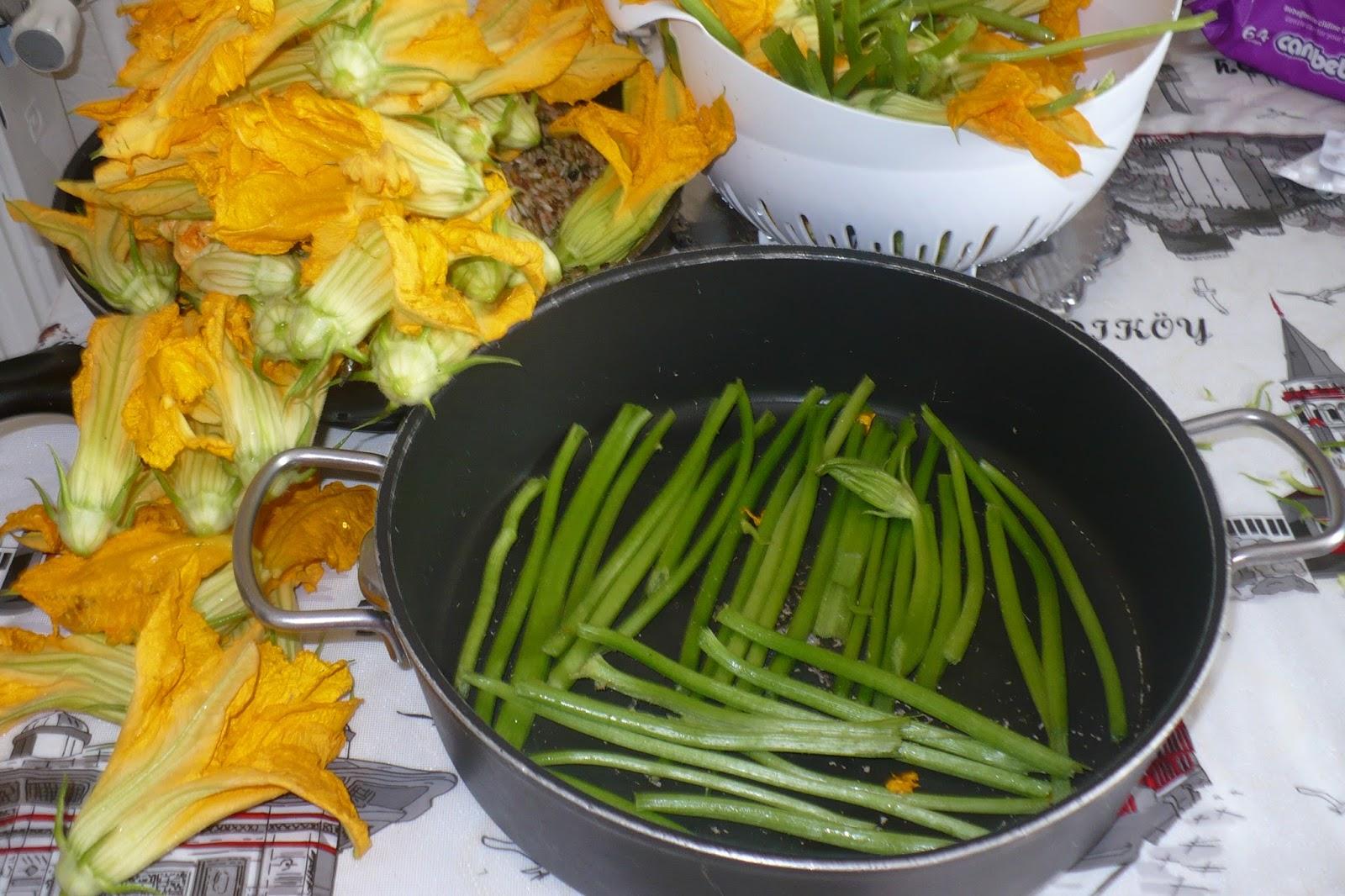 Zeytinyağlı Kabak Çiçeği Dolması Yapılışı Videosu