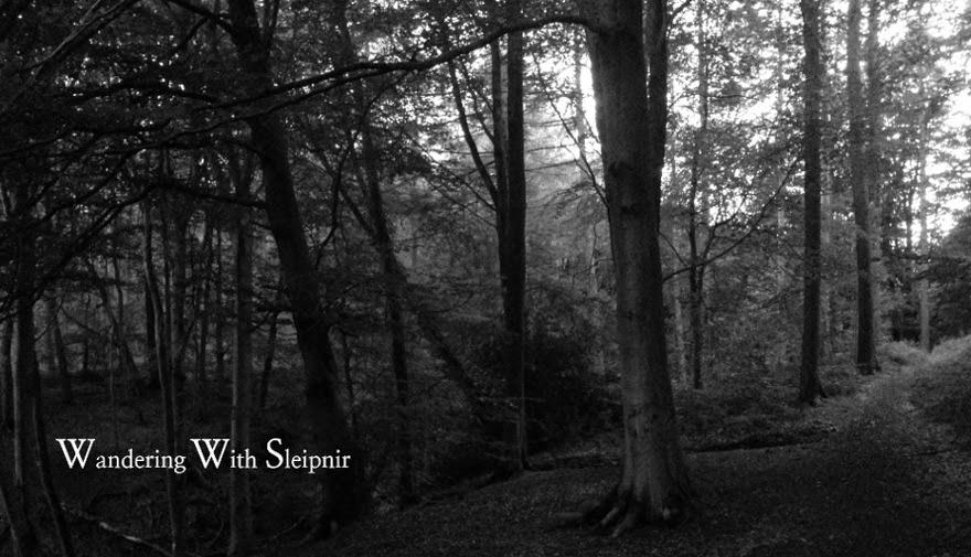 Wandering with Sleipnir