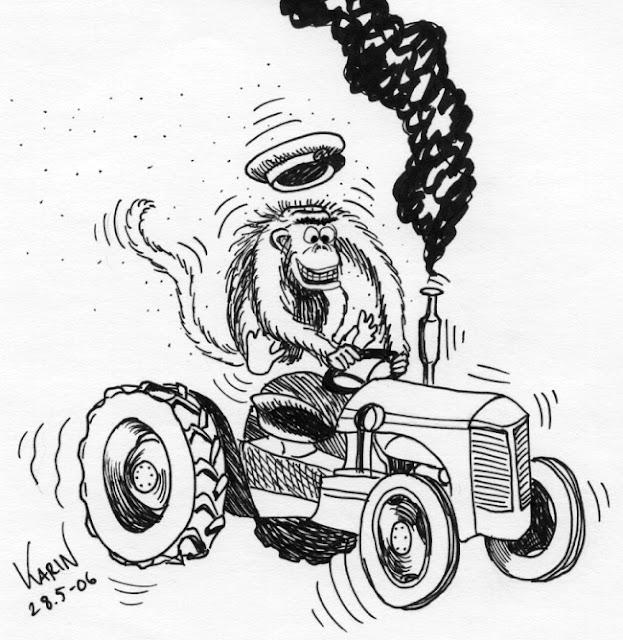 Apa på gammal traktor