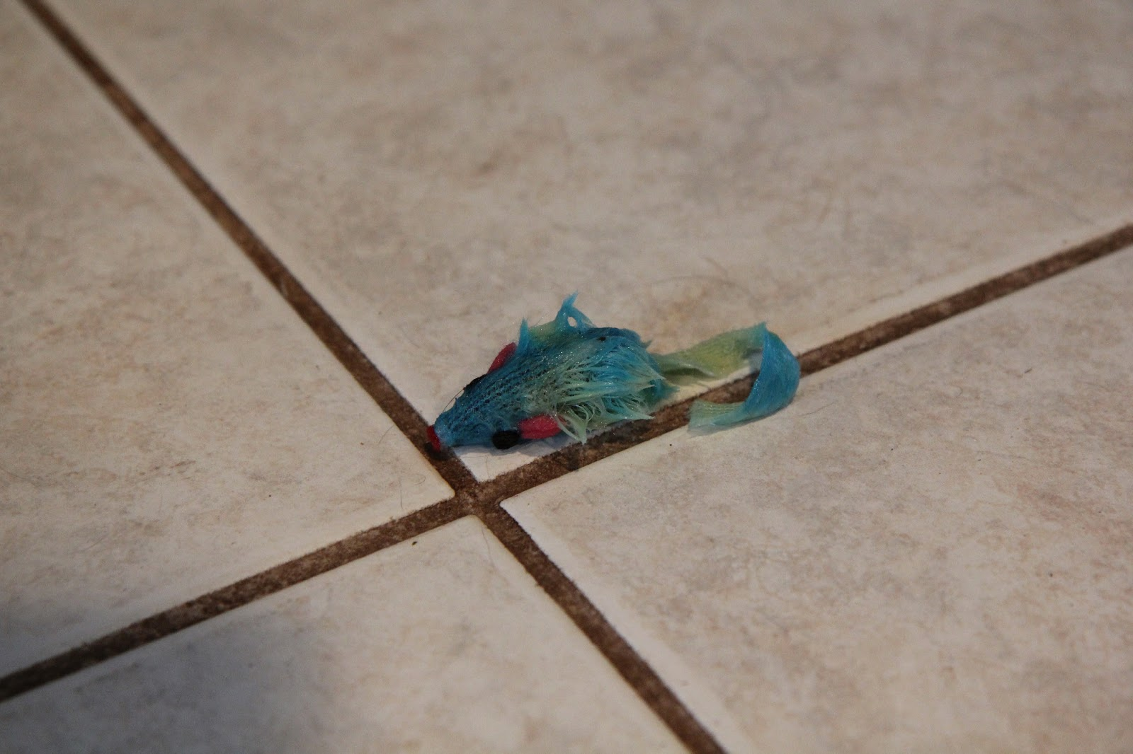 A wet and ruined cat toy on the floor