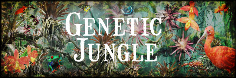Genetic Jungle