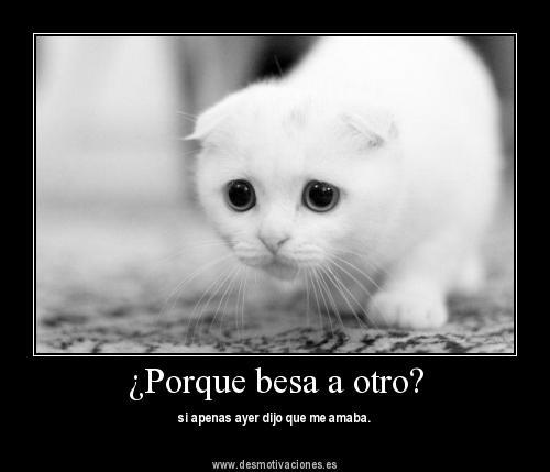 a veces ser feliz me hace llorar: