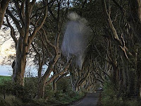 Ada Hantu di Dark Hedges