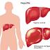Saiba mais sobre prevenção e riscos da hepatite