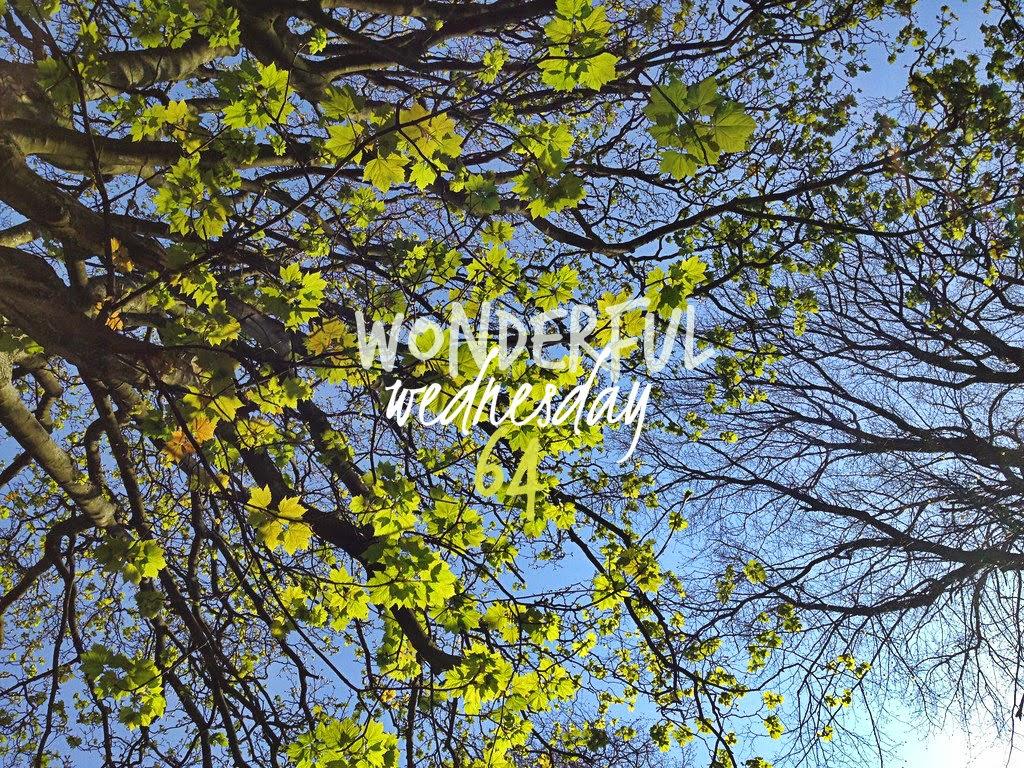 Wonderful Wednesday #64