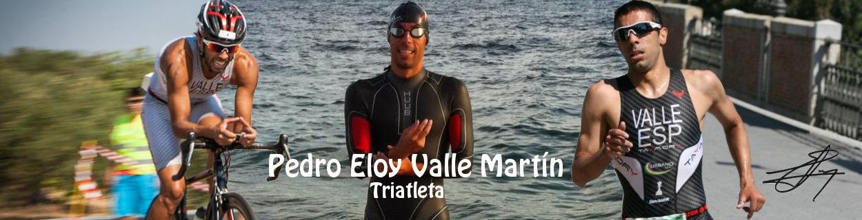 PEDRO ELOY VALLE MARTIN