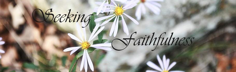 Seeking Faithfulness