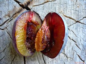 Robaczywe śliwki - jak walczyć z owocówką śliwkóweczką