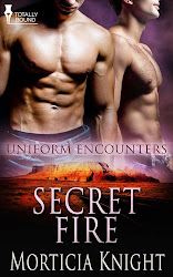 Uniform Encounters 5 - Now an ARe Bestseller!