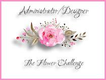 Design Team Administrator/Designer