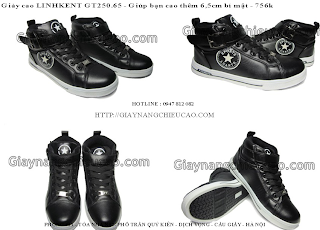 Giày nam GT250. 65