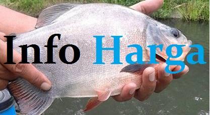 Info Harga