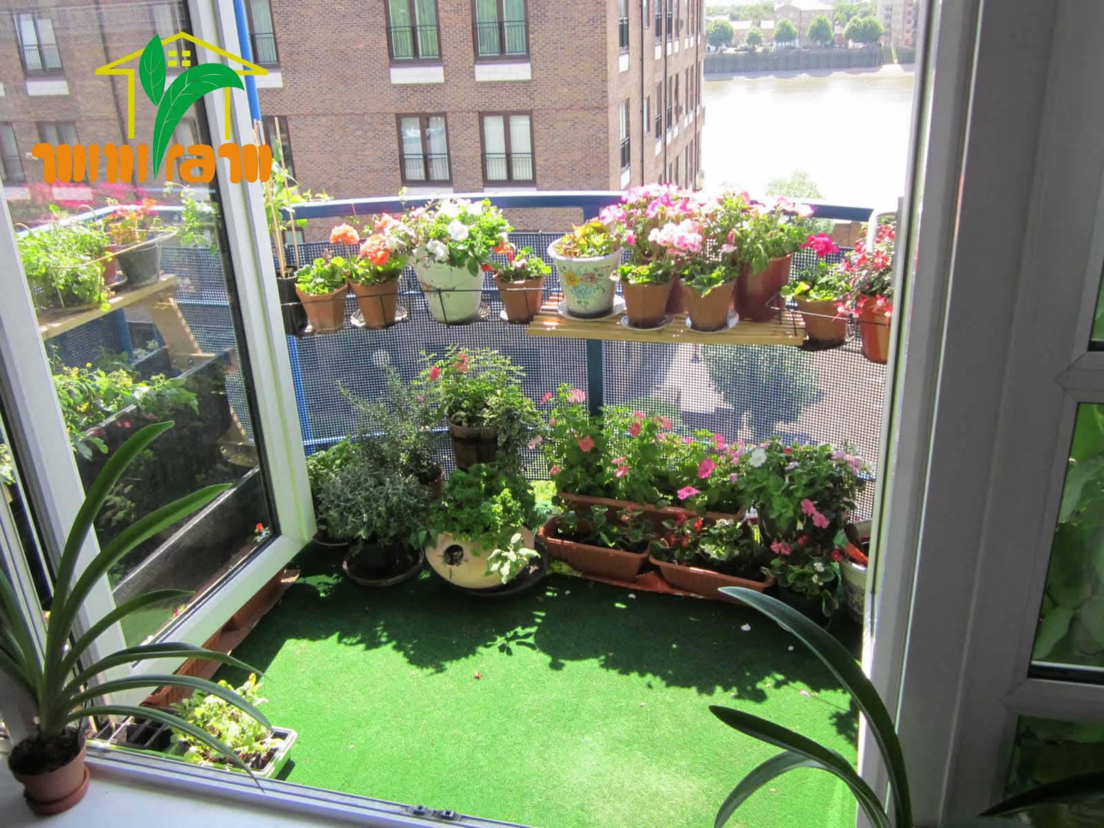 Chậu nhựa chữ nhật trồng cây trang trí ban công