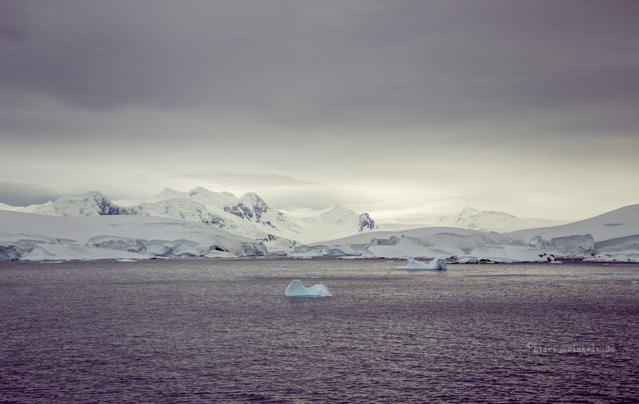 Eisberge und grauer Himmel in der Antarktis