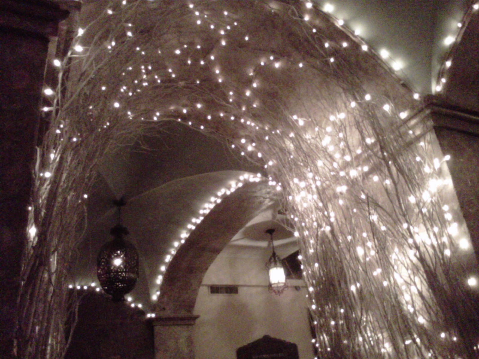Christmas Lights: Not Just For Santa Anymore
