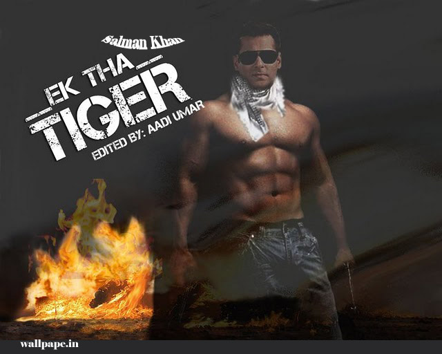 First Look: Salman Khan's Ek Tha Tiger Poster,FIRST LOOK: Salman Khan