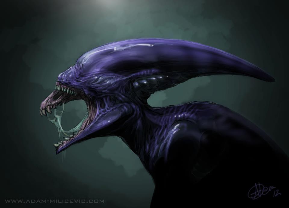 Xenomorph Prometheus   Proto   Alien Art  Prometheus