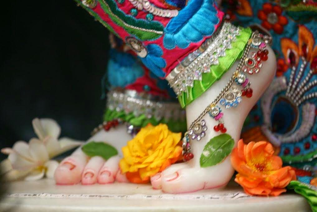 Lotus Feet of Sri Sri Vrindavan Chandra